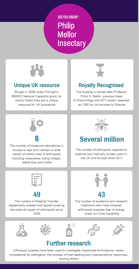 PMI Infographic