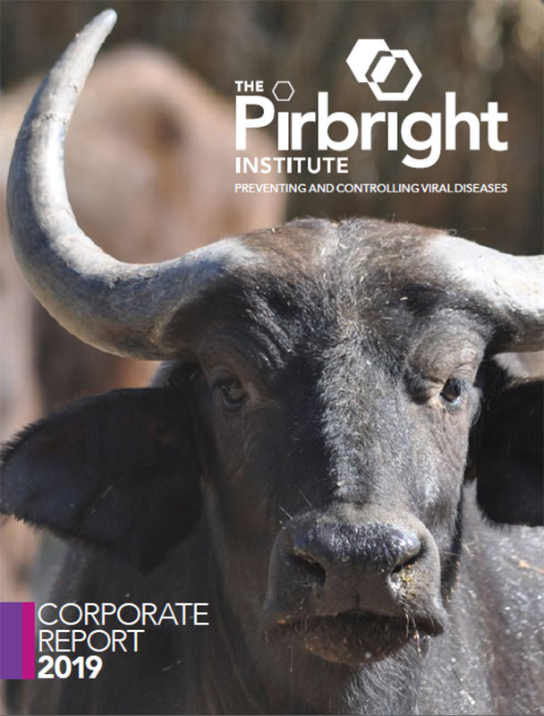 Cover of Pirbright Corporate Report 2019