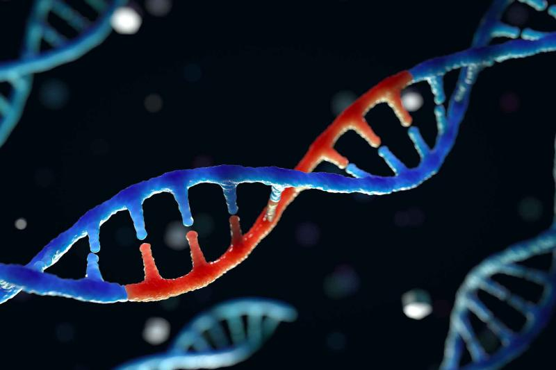 gene edited DNA