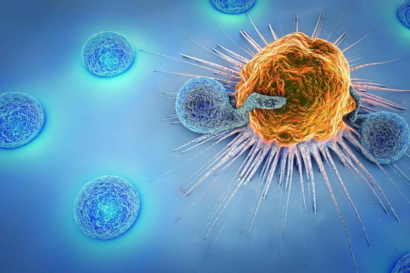 Immune cells killing another cell
