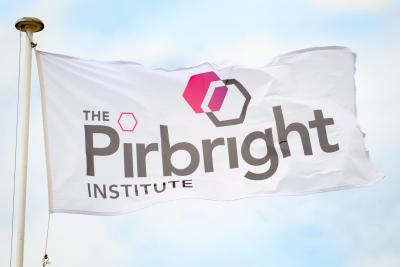 The Pirbright Institute Flag raised on a flagpole, billowing in blue sky