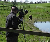 Image: Mark Stevens BBC at Pond at Dairy