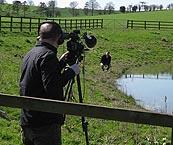Image: Mark Stevens BBC at Pond at Dairy
